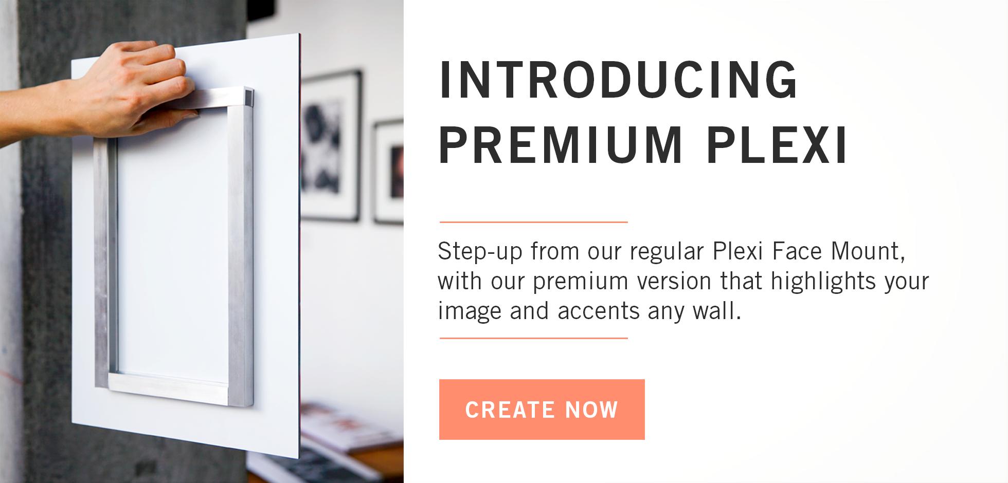 Introducing Premium Plexi