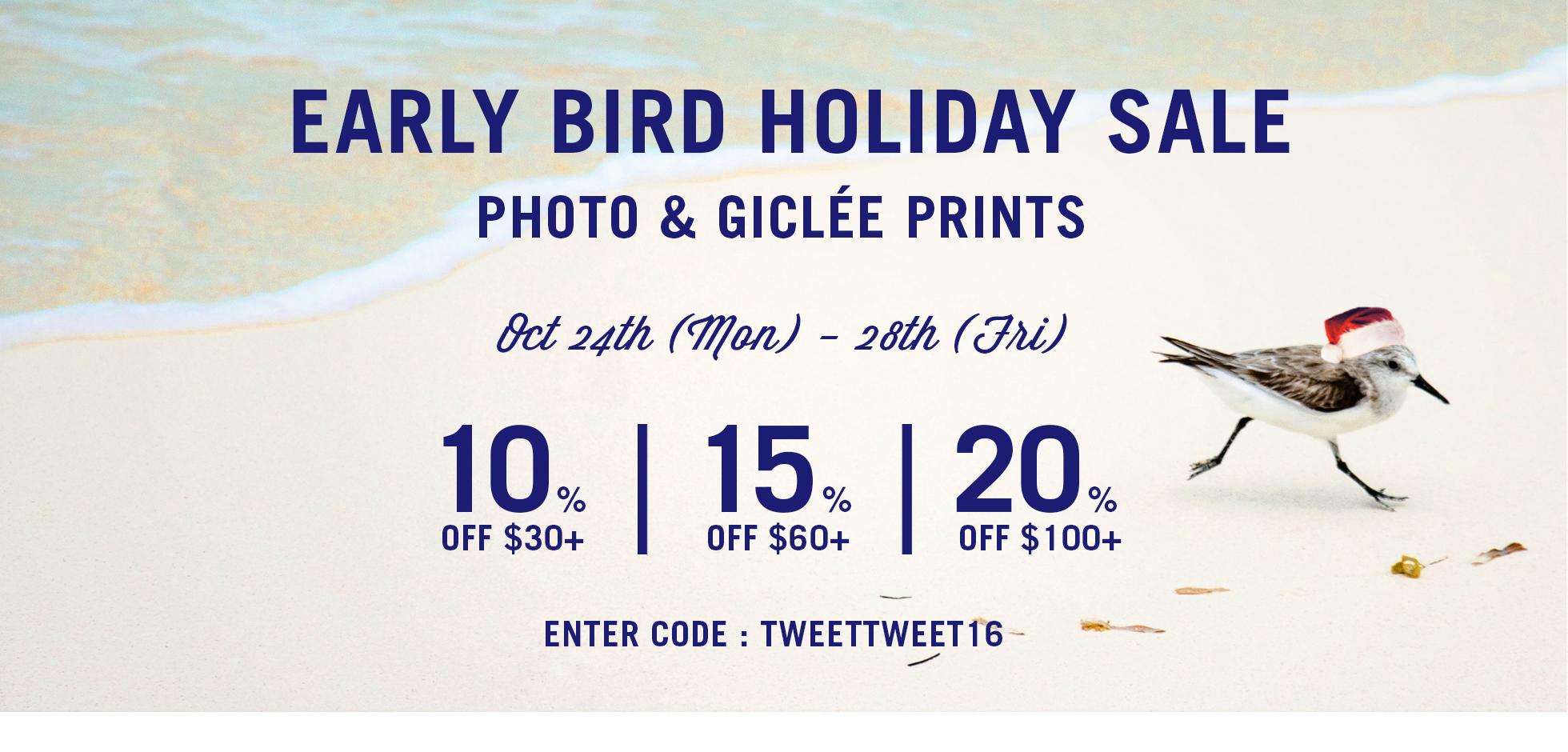 Early Bird Holiday Sale
