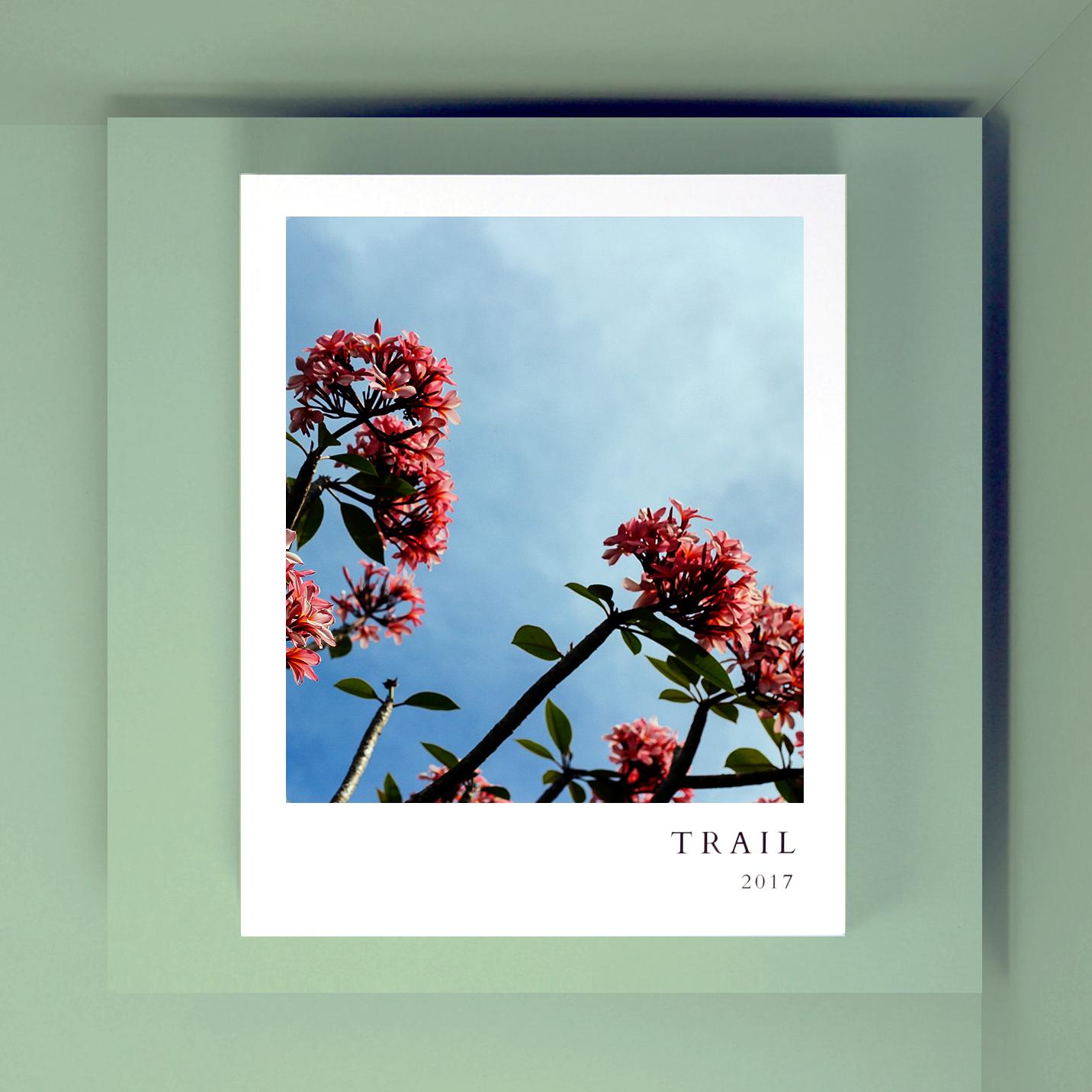 Eco Friendly Photobook
