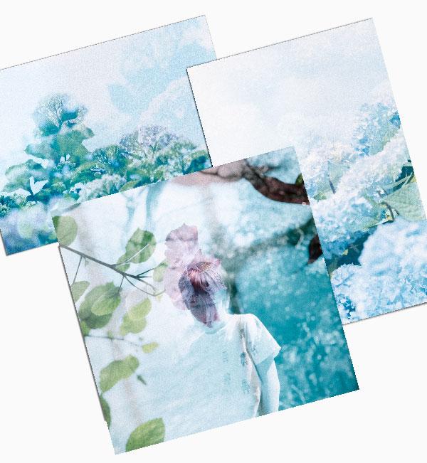 Premium Photo Prints