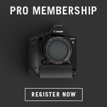 pikto pro membership
